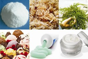 are-all-types-of-carrageenan-safe